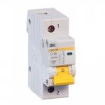 Автоматический выключатель 1-фазный 100А х-ка С ИЭК
