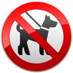 Наклейка Запрещается вход с животными